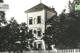 """12. Willa """"Ewarystówka""""/ """"Irena"""" ul. Mickiewicza 12"""